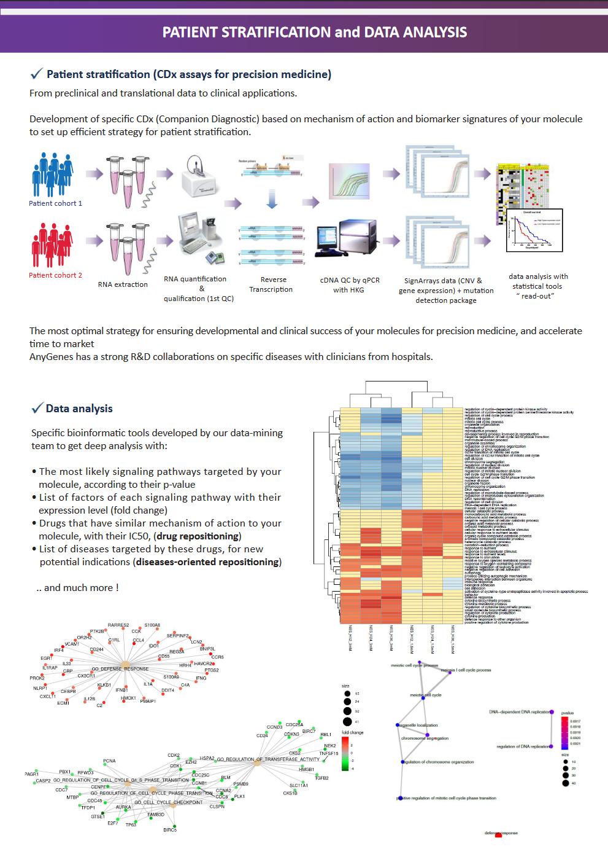 signaling pathways flayer 4