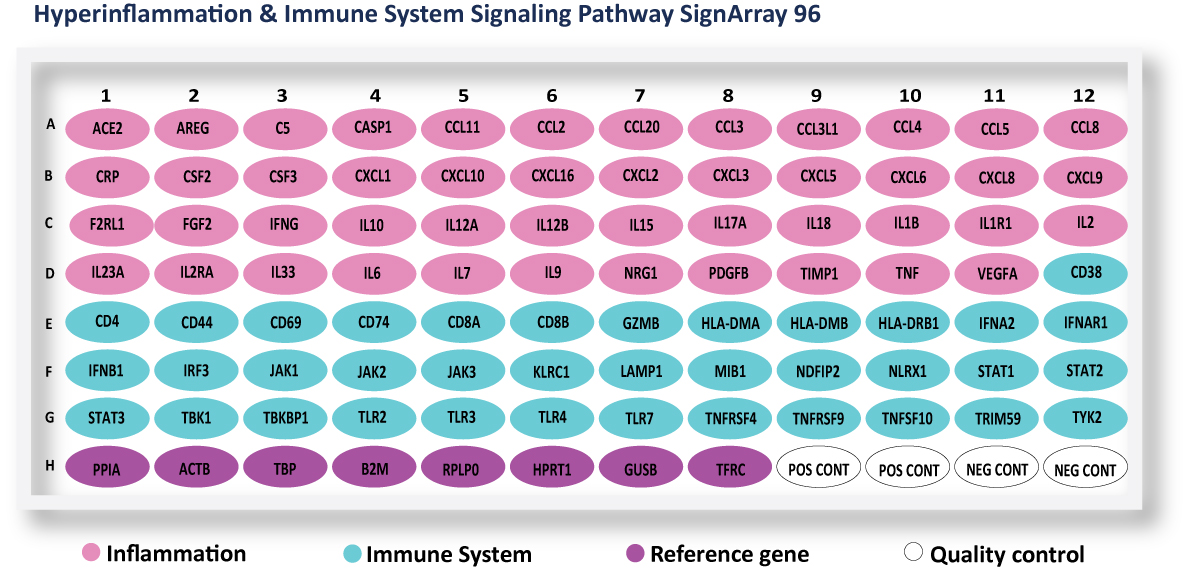 Hyperinflammation and Immune system
