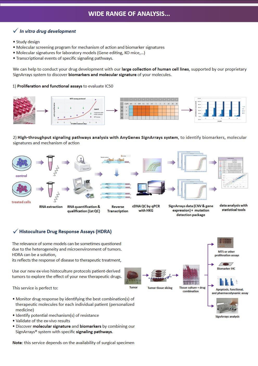 signaling pathways flayer 2